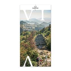 Flyer ViaSurprise