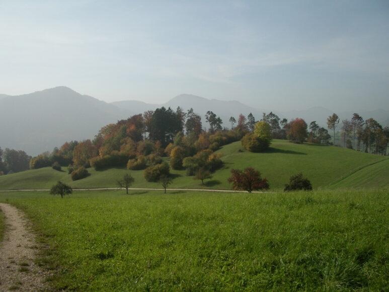 2. Solothurner Waldwanderweg 4