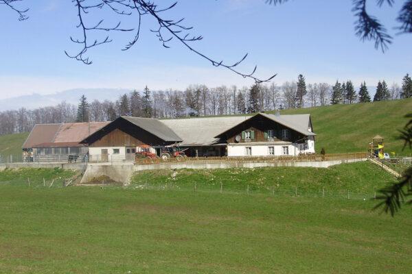 Bergrestaurant Hinter Brandberg, Scheltenpass