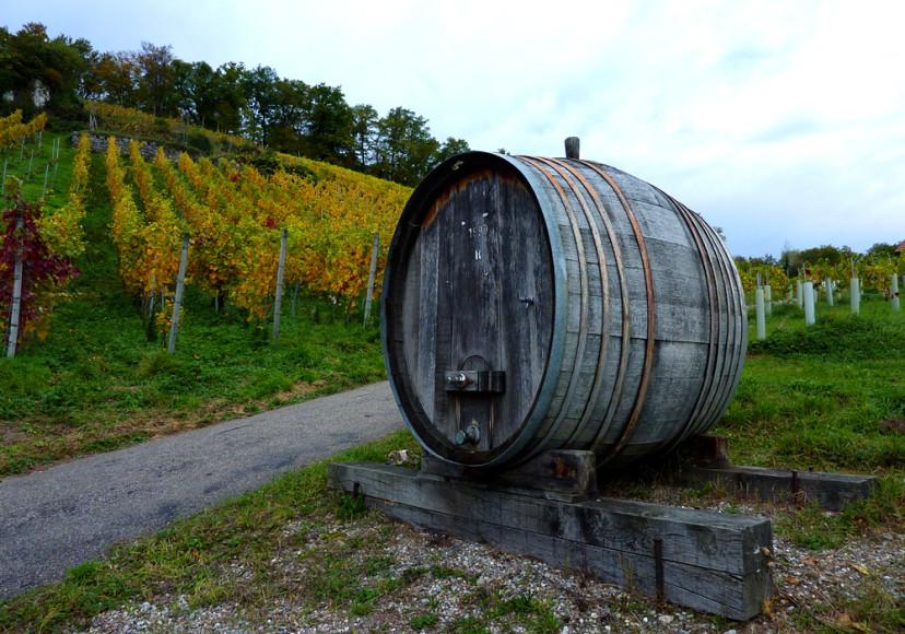 Weinbau_Fanti_Weinfass