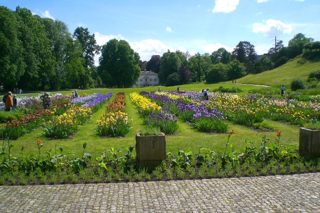 Park im Grünen - Grün 80