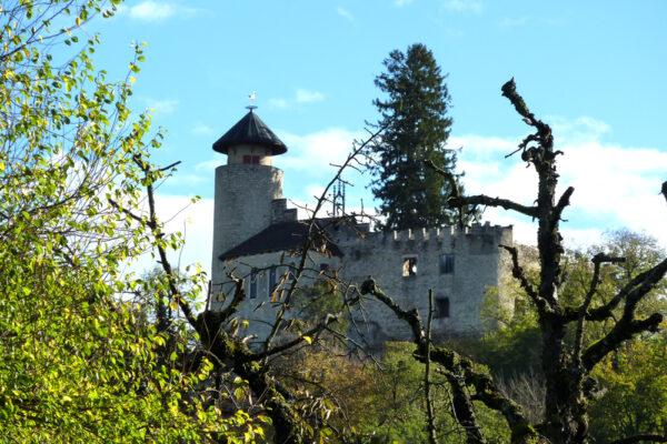 Ermitage, Schloss Birseck